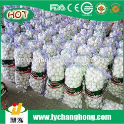 [HOT]2014 China fresh pure white garlic/wholesale garlic
