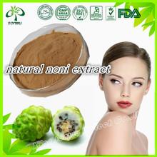noni extract powder/fresh noni fruit