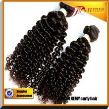 Goddess remi hair wholesale Mongolian kinky curly hair distributors wanted