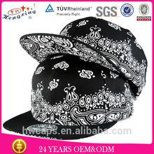 The newest fashion popular stylish blank free plain snapback hats