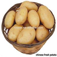 fresh potato wholesale market