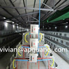 High quality Automatic layer chicken cages /Broiler cage poultry equipment (Professional manufacturer)