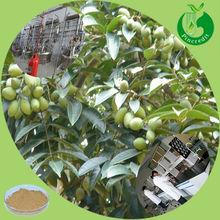 Hot sale Oleuropein10% 20% 50% Olive Leaf Extract Powder