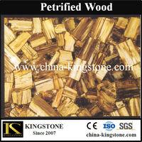 Nature semi precious gem stone fossil wood stone petrified wood