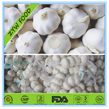 2014 Chinese New Crop Wholesale Fresh Pure White Organic Garlic in Mesh Bag Prices for sale Good Quality Exporter in China