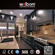 Elegant American Home Designer Kitchen