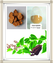 polygonum multiflorum thunb,polygonum multiflorum thunb extract