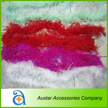 Fashion Colourful Ostrich Feather For Party & wedding