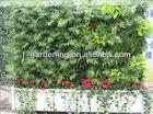 Living walls garden, green home living walls, garden planter