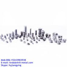 Miniatura tornillos / Micro tornillos / tornillos de precisión