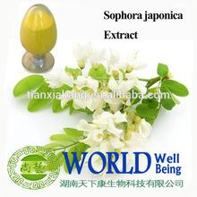 sophora japonica l. extract quercetin /sophora japonica extract rutin powder / natural sophora japonica flower extract