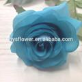 gerçek dokunma küçük bebek mavi gül yapay çiçek yapma ev dekorasyonu