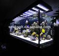 أسماك المياه المالحة حوض السمك بالجملة 20kg ملح البلاستيك تربية الأسماك دبابات