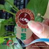 RFID Printed HF label