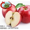 Fresh Delicious Sweet Apple Fruit Gala Apple