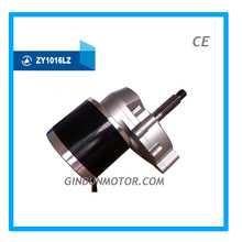 350W24V Hot selling DC geared Motor for balance vehicle ZY1016LZ