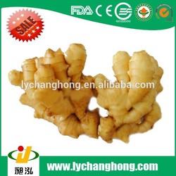 China Fresh ginger and Garlic for Brazil and Amerca