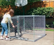 4ft *6ft Chain Link Fence Dog Cage/Dog Cage for Sale(ISO9001)