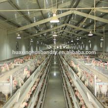 Forte fil d'acier maille de poulet cage batterie poule à vendre