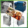 Stainless Steel Electric Automatic Nut Roaster Manufacturer