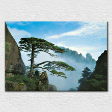 Canvas printed Fresh and green art from photo of China's famous welcoming Pine tree oil painting for home decor free shipping