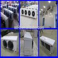 Chine manufachina fabricant électrique dégivrage externe moteur évaporateur pour chambre froide de stockage de refroidissement refroidi entrepôt congélateur