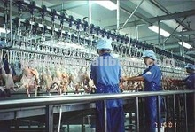 Chicken Slaughter Poultry Processing Equipment