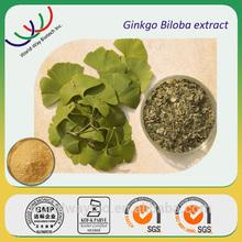 Chinese herb medicine high quality ginkgo biloba extract 100% pure natural 24/6 gingko p.e