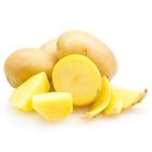 Potato flavor powder