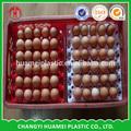 personalizado plástico ovo de codorna bandeja