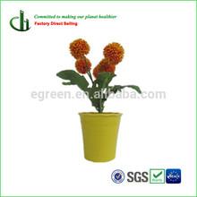 plant fiber glowing flower pot