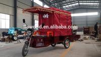 850/1000W/24tubes Controller passengers auto rickshaw/e rickshaw for sale
