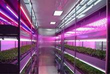 SMD 18w led tube light t8 lamp for Growing Tomato,Lettuce,Flower,Medical plants etc.