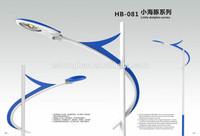 30W solar powered street lighting system