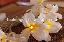 White Frangipani Flower LED Fairy Light String Decoration