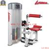 LJ-5511 Back extension impulse fitness commercial equipment