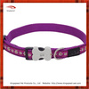Plain nylon hot sell dog collar