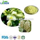 Good Quality Sophora Japonica Extract / Rutin Powder 98% HPLC