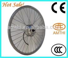 Brushless Low-speed Electric Bike Motor/Electric Bicycle Rear Spoke Wheel Hub Motor, electric bicycle brushless dc motor