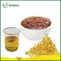 olio di semi di lino benefici per la salute