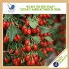 China organic fertilizer for goji berry herb extract