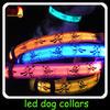 led usb rechargeable dog collars/dog collar led lights/led flash dog collar