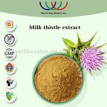 free sample slymarin,hunan changsha HACCP Kosher FDA silymarin,silybinin,milk thistle extract powder