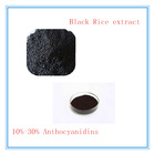 Antioxidant Black Rice Extract Anthocyanin