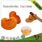 GMP 100% organic china herb Juncao growing raw reishi mushroom