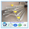 Egg Production Project Poultry Farming Equipment A type layer chicken cage for Sale