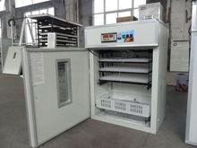 528 Best price quail egg incubators for sale/quail incubator/egg hatchers