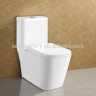 Double Flush S-trap One Piece Toilet Bowl