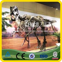 Realistic Skeleton Model Of Dinosaur T-Rex Dinosaur Skeleton