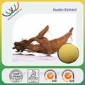 Libre de la muestra de ensayo y gmp y haccp kosher certificar fabricante de suministro de alimentosingrediente 40% puerarin polvo de kudzu